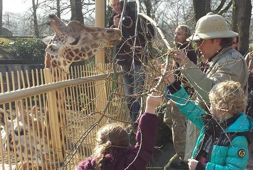 dierentuin Suus kinderdroomwens